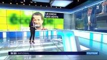Primaire d'Europe écologie-Les Verts : Yannick Jadot élu