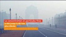 Inde : piégée par la pollution, New Delhi étouffe