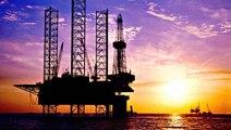 Opec warns of oil demand peak in 2029
