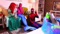 Is Spiderman Kissing Cinderella?! w/ Frozen Elsa & Anna, Pink Spidergirl Mermaid, Catwoman & Joker