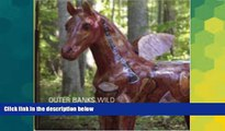 Must Have  Outer Banks Wild: Volume III: A Winged Horse Extravaganza Pictorial (Outer Banks Wild