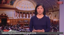 Collectivités et prévention de la radicalisation puis extrait du PJL Statut de P - Les matins du Sénat (10/11/2016)