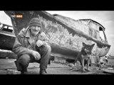 Bir Fotoğrafçının Gözünden İstanbul - Harika Türkiye - TRT Avaz