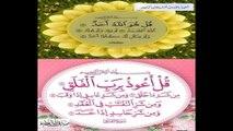 AL QURAN SURAT AL FATIAH SURAT IKHLAS SURAT FALAQ BY ABDUL REHMAN SUDAIS