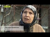 Safiye'den Sofia'ya Çalınan Kimlikler - 11 Bölüm HD