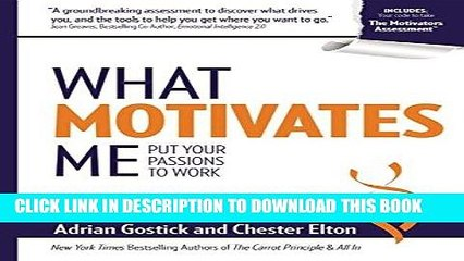 Ebook What Motivates Me: Put Your Passions to Work Free Read
