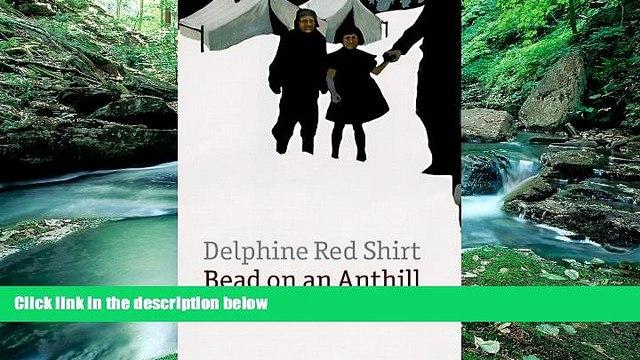 Big Deals  Bead on an Anthill: A Lakota Childhood  Best Seller Books Most Wanted
