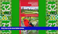 Big Sales  Chicago Birds: A Folding Pocket Guide to Familiar Species in Northeastern Illinois