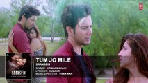 Tum Jo Mile Full Audio Song _ Armaan Malik _ SAANSEIN _ Rajneesh Duggal, Sonarik