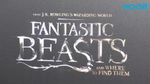 All Five 'Fantastic Beasts' Will Be Directed By David Yates