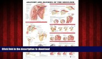 liberty books  Anatomy and Injuries of the Shoulder Anatomical Chart online