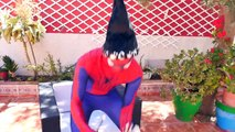 Spiderman Loses His Mask! w Frozen Elsa Pregnant, Pink Spidergirl vs maleficent! Funny Superheroes