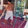 A big lizard into the house