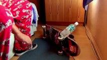 TOP 19 Ultimate Water Bottle Flip CHALLENGE Video! (BEST Water Bottle Flips Trick Shots Compilation)