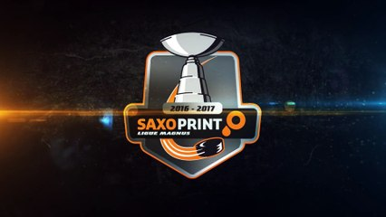 Saxoprint Ligue Magnus: LHC vs GRENOBLE 12/11/16