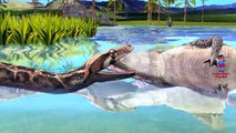 Crocodile Vs Python Fight In Jungle | Most Amazing And Dangerous Fighting Video | Animals Cartoons