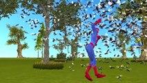Finger Family Rhymes Fat Spiderman   Joker Bees Prank Doctor Frozen Elsa Vs Spiderman Get Fat