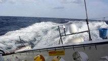 Kito De Pavant au large des îles du Cap Vert / Vendée Globe