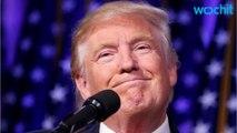 Will Donald Trump Actually Build A Border Wall ?