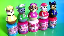 Nickelodeon Paw Patrol Weebles Wobble Mashems & Fashems Toys Surprise by Funtoyscollector-1kYEPnunQjY