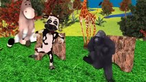 Little Baby Boy SpiderBaby Dancing With Animal Little Baby Boy Dinosaur Gorilla Animal Rhymes