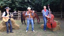 COUNTRY FIDDLE (violin, double bass, guitar)