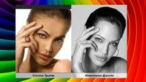 анджелина джоли похожие люди знаменитости звезды актеры двойники в мире фото видео сходства фильмы