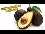 Health Benefits of Avocados   Best Health and Beauty Tips   Education