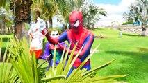 Spiderman & Frozen Elsa! Caça aos ovos surpresa! Homem aranha em uma caça ao tesouro!