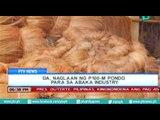 [PTVNews 6pm] DA, naglaan ng P100-M pondo para sa Abaka Industry [7|16|16]