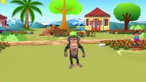 Finger Family Monkeys Dance Nursery Rhymes | 3D Animation Monkeys Songs for Babies
