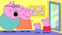 Peppa Pig Daddy The Tooth Fairy. Peppa Pig Trasure Hunt Cartoons. Compilation full episode