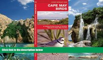 Big Sales  Cape May Birds: A Folding Pocket Guide to Familiar Species in Cape May County (Pocket