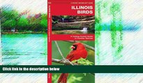 Buy NOW  Illinois Birds: A Folding Pocket Guide to Familiar Species (Pocket Naturalist Guide