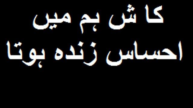 watch the condition of heumen lpakistani dramas indian dramas films pakistani songs  stage shows bin roey drama sanaam drama dewana drama rahat fath ali khan pakistani anchor neews chy wala news geo news ary news geo head lines new songs2016 old songs