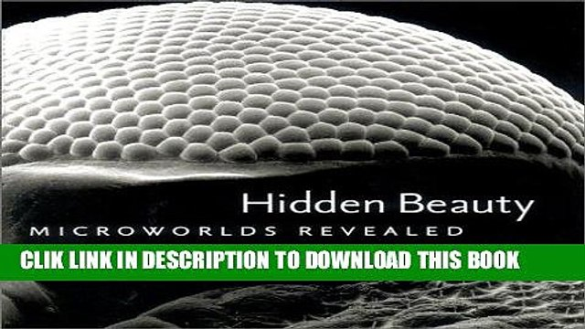 Best Seller Hidden Beauty: Microworlds Revealed Free Read