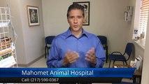 Mahomet Animal Hospital MahometSuperb5 Star Review by Julie D.[Local Veterinarian] [Veterinarian in Mahomet|Vet in Mahomet]