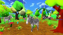 Animals Sounds For Kids And Children | Learning Zoo Animals Sounds For Children And Babies