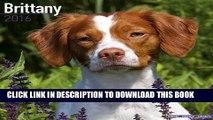 [PDF] Brittany Calendar - Only Dog Breed Brittanys Calendar - 2016 Wall calendars - Brittanys Dog