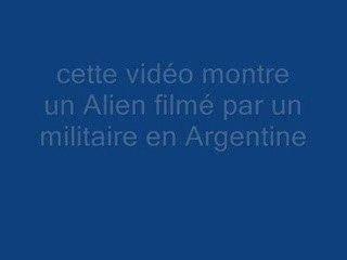 bébé Alien (baby Alien)