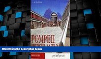 Big Deals  Guide with Reconstructions Pompeii - Herculaneum Past and Present With Reconstructions