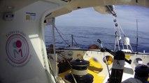 Calme plat et petite baignade pour Kito de Pavant / Vendée Globe