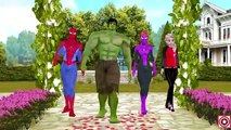 Spiderman Frozen Hulk Treasure Hunt | Funny Joker Short Movies | Fun Superheroes Short Movie