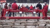 Bovins lait  : travail sans labour en agriculture bio