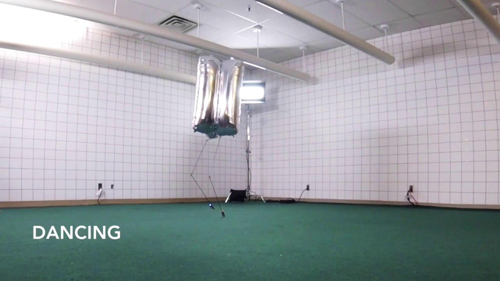 Ballu, un étrange robot-ballon qui marche sur l'eau