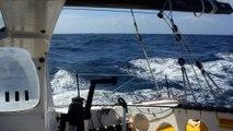 J12 : Kito de Pavant passe l'équateur / Vendée Globe