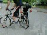 un reverse nose manual ou descendre en roue av en ariere vtt