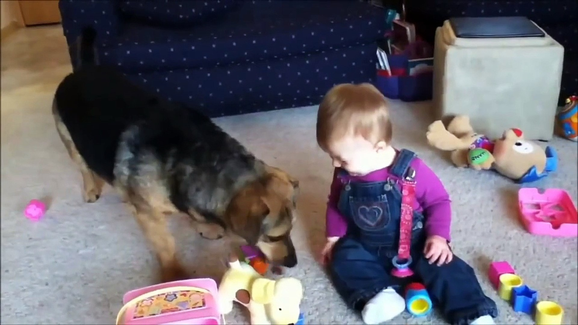 Funny Babies Laughing Playing, Dancing with Pet Animals
