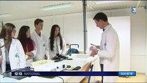 Sciences : des lycéens font pousser des radis comme dans l'espace