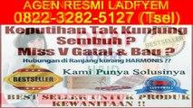 0822-3282-5127 (Tsel), Agen Resmi Ladyfem Di Semarang